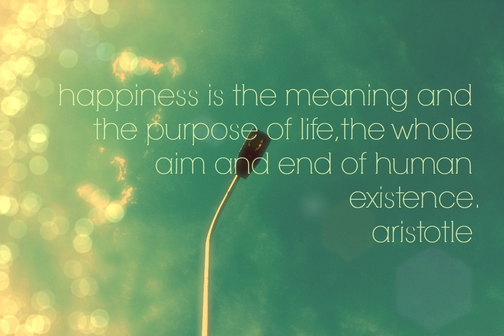 essay on happiness in life There's more to life than being happy meaning comes from the pursuit of more complex things than happiness.