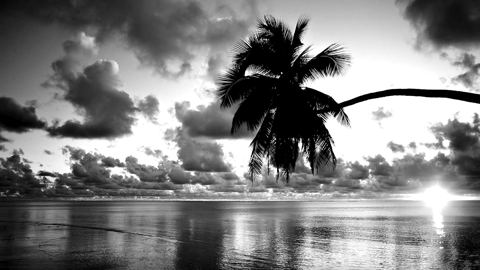 Black White Sunset Beach Wallpaper Hd Fleetinglife